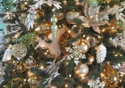 christmasMercola-012